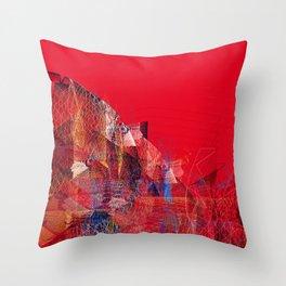 11617 Throw Pillow