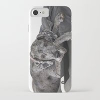 great dane iPhone & iPod Cases featuring Great Dane waiting by Deborah Janke