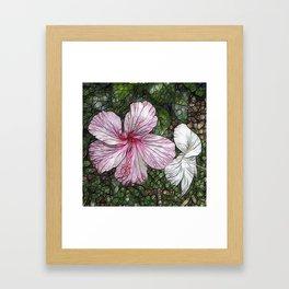 Fabulous hibiscus Framed Art Print