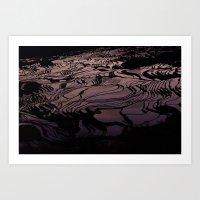 Colorful Rice Terraces Art Print