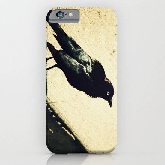 Little Blackbird iPhone & iPod Case