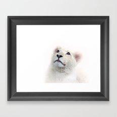 White Lion Cub Framed Art Print