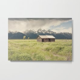 Summer in the Tetons Metal Print