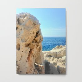 Nature Hard & Soft Metal Print