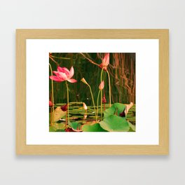 LillyHeights Framed Art Print