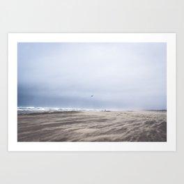 Bird in Flight Over Grayland Beach, Washington Art Print