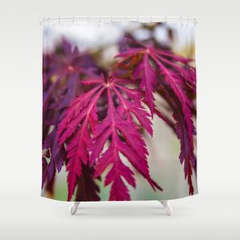 Autumn leaves in the summer Shower Curtain