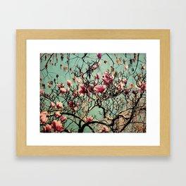 Pink Japanese Magnolia Tree in Flower Framed Art Print