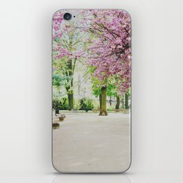 french cherry blossom iPhone Skin