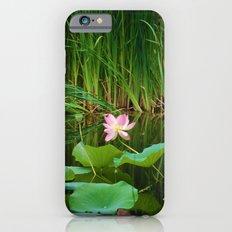 Lotus Blossom Flower 18 Slim Case iPhone 6s
