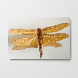 Gilt Dragonfly Metal Print