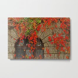 fairy-tale castle Metal Print