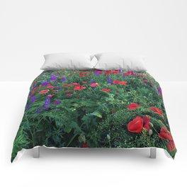 Good buy my Summer Comforters