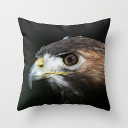 Sparkle In The Eye - Red-tailed Hawk Throw Pillow