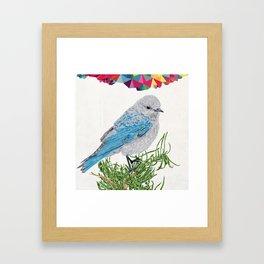 Mt Bluebird Framed Art Print