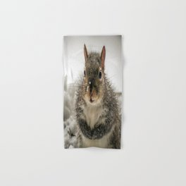 Adorable Praying Squirrel..Feed ME!! Hand & Bath Towel