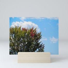 First Signs of Fall at Sebago (2) Mini Art Print