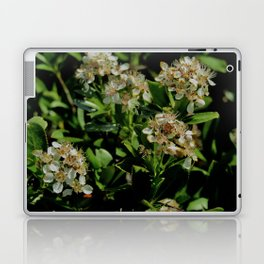 Stopping to Smell the Flowers at the Top of the Mountain Laptop & iPad Skin