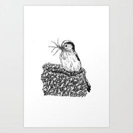 Long-tailed tit - Aegithalos caudatus Art Print