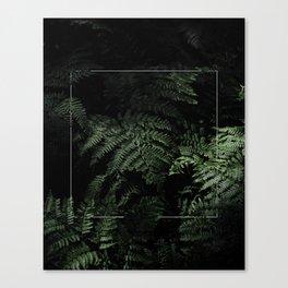 Soft Highlights Canvas Print
