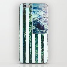USA Wilderness iPhone & iPod Skin