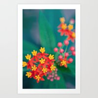 fireworks Art Prints featuring fireworks by shannonblue