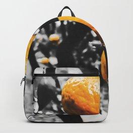 fresh orange fruit in the garden Backpack
