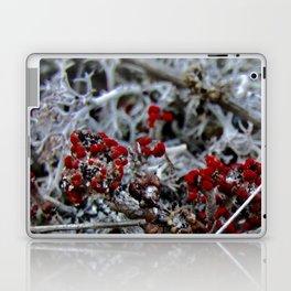 Devil's Matchstick Lichen Laptop & iPad Skin