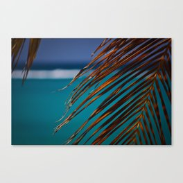ocho rios, jamaica Canvas Print