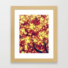 Fall 2 of 2  Framed Art Print