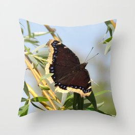 Mourning Cloak Butterfly Sunning Throw Pillow