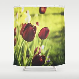 When Spring Was Here Shower Curtain