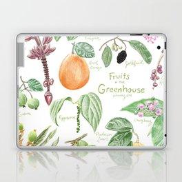 Wintertime Fruit in the Greenhouse Laptop & iPad Skin