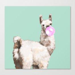 Baby Llama Blowing Bubble Gum Canvas Print