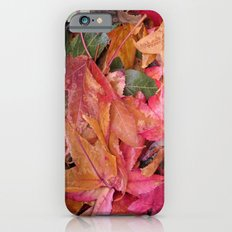 Fall colors iPhone 6s Slim Case
