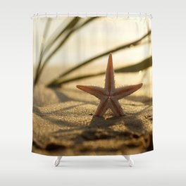 Starfish Still life on the beach in sunset Shower Curtain