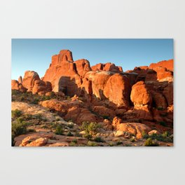 Eager for the Sunset Canvas Print