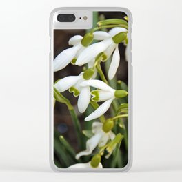 First signs of spring (snowdrops) Clear iPhone Case
