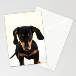 Weenie dog (color) Stationery Cards