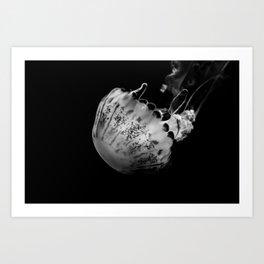 Jellyfish in Black & White Art Print
