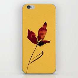 Floral Abstract No.2s by Kathy Morton Stanion iPhone Skin