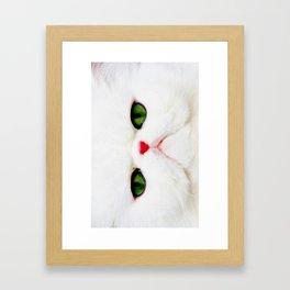 Pure Grumpiness Framed Art Print