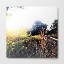 Lens Flare & Train Tracks - Beacon NY Metal Print