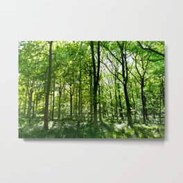 English Forest Metal Print