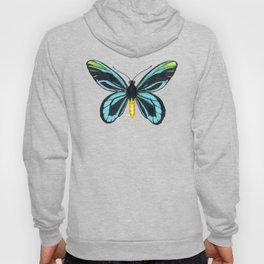 Queen Alexandra' s birdwing butterfly Hoody