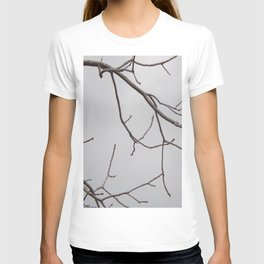 Cold Grey Sky Behind Leafless Tree Branches T-shirt