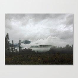 // wishful // Canvas Print