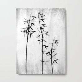 Three Hosta - Black and White Vintage Style Botanical Photograph Metal Print