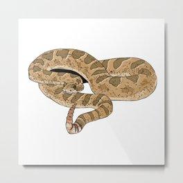 Sidewinder Rattlesnake Metal Print