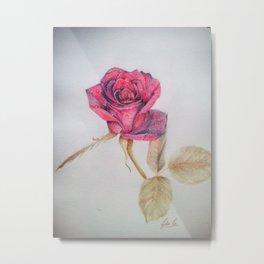 Rosa Metal Print